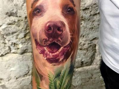 פיטבול עם עלה ירוק קעקוע כלב