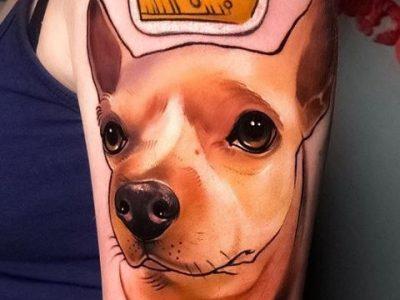 קעקוע ריאליסטי צבעוני כלב עם כתר ולב אדום פינצ'ר